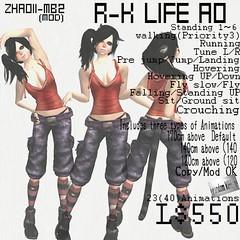 =random kitten= R-K LIFE AO