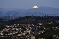 5103 Moonrise (Kevin Baird) Tags: moon full fullmoon moonrise