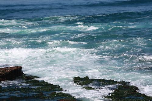 the pacific ocean in la jolla