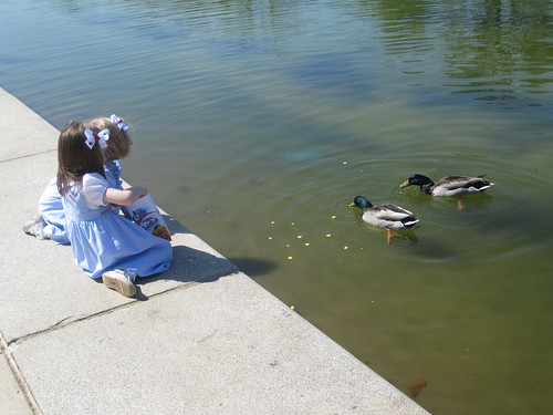 Kids feeding the ducks in their sunday best