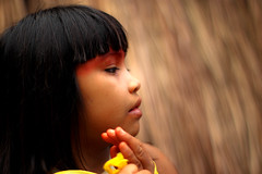 beleza e suavidade da Map (J.Cheng) Tags: people brasil arte gente takumar culture 50mm14 xingu brasileiro cultura juventude folclore descendente kuikuro altoxingu etniakuikuro