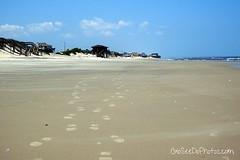 Long Walks on the beach (Go See Do Photos) Tags: beach sand footprints northcarolina nagshead outerbanks
