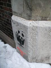PANDASAURS (it's tea) Tags: ohio streetart graffiti stencil panda dinosaur cincinnati