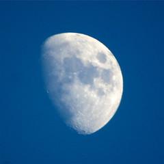 moon50cm