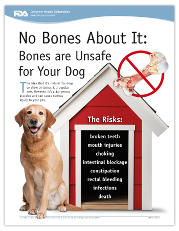 No Bones About It: Bones are Unsafe for Your Dog