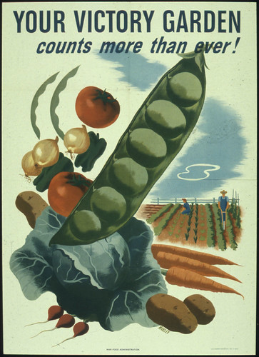 Your Victory Garden Counts More Than Ever! 1941 - 1945