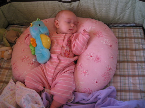 snoozing with seahorse