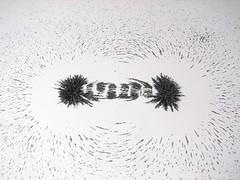 Magnetic Fields - 11