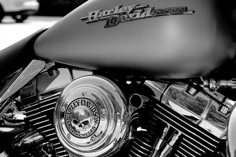 Day 209: Harley Skull