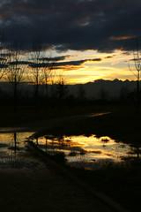 ouo (giancarvedsse) Tags: strada tramonto nuvole giallo cielo pista ciclabile riflesso villaretto
