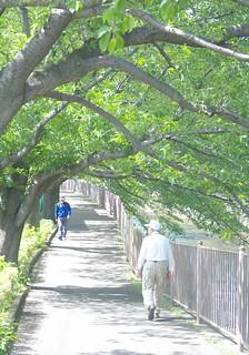 町田樹 画像79