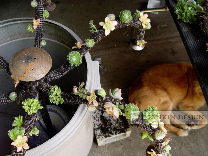 succulent-chandelier-4