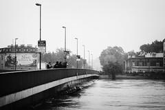Most Dbnicki (KSAF AGH) Tags: wisa powd krakoff wielkawoda powdwkrakowie