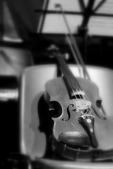 """Primo violino • <a style=""""font-size:0.8em;"""" href=""""http://www.flickr.com/photos/49106436@N00/4630224944/"""" target=""""_blank"""">View on Flickr</a>"""