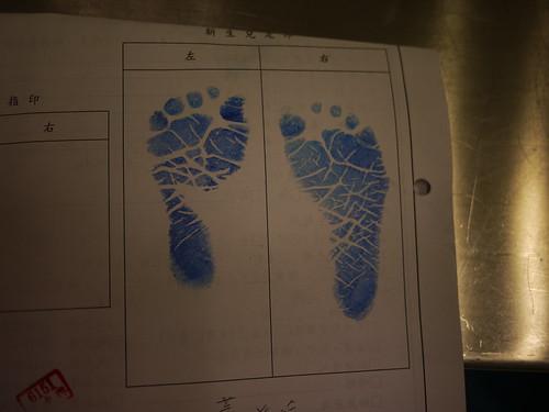 蕾的小腳印
