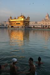 B A T H. Amritsar (Rohit Markande) Tags: boys morninglight bathing amritsar goldentemple