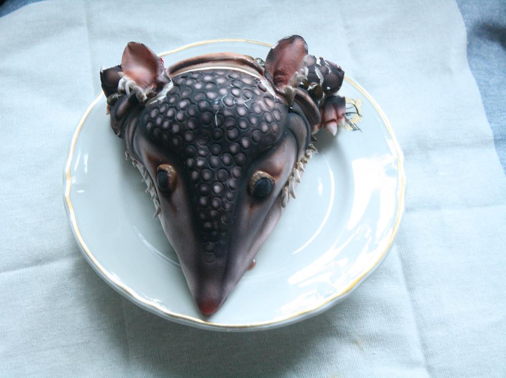 armadillo head