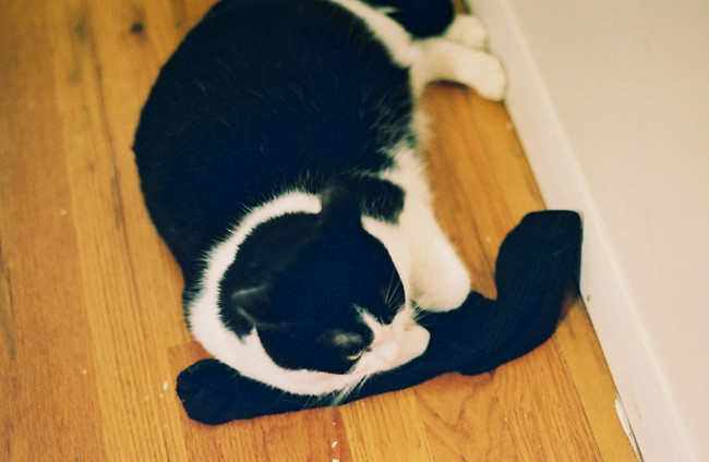 and they call it... sock love?