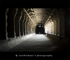 An usual perspective from my PoV (SenShots / Senthilmani's Photography) Tags: old light canon photography one shadows village god perspective culture belief lord divine shade trust strong tradition spiritual pillars powerful tamil tamilnadu kanchi almighty kanchipuram oneness converging tamiz kancheepuram templetown sendil canoneos1000d senshots senthilmani senshotsphotography senthilmaniphotography