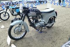 Triumph Thunderbird (antiogar) Tags: motorcycles triumph bathtub 6t scms