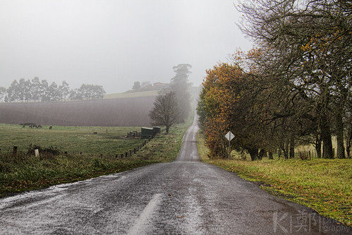 Wet Winter Lane