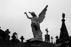 Everyone has their cross to bear (kees straver (will be back online soon friends)) Tags: bw argentina cemetery stone angel canon crosses canoneos5dmarkii keesstraver