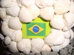Barco de Conchas (Fundo do Mar) Tags: praia seashells mar artesanato conchas compras maquetes caramujos