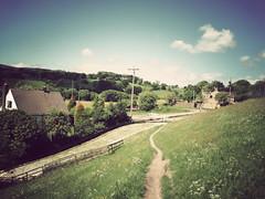 Country Walk (danielleyc) Tags: summer nature sunshine countryside walk sunny lancashire walkies colne canonixus95is danielleyc
