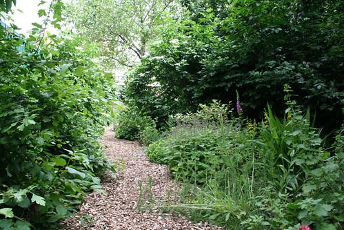 Fann Street Wildlife Garden
