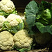 Cauliflower and cabbage