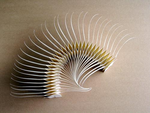 spine book