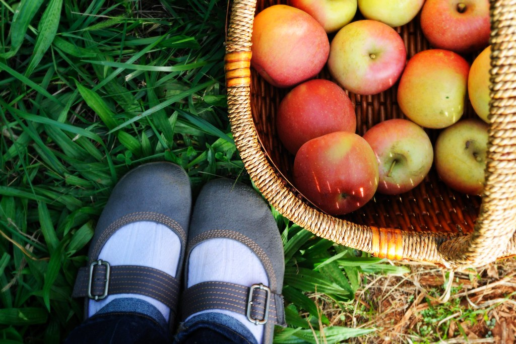 basket of apples & pretty shoes