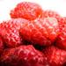 288/365: Raspberries
