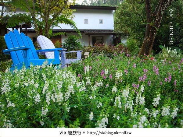 【新社】香草HOUSE~新社薰衣草森林最新溫暖系民宿(上)4