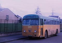 Paton FYS698 Renfrew (Guy Arab UF) Tags: bus buses scotland 1956 paisley renfrew paton leyland weymann worldmaster glasgowcorporation rt31 royaltiger fys698