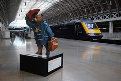 Paddington at Paddington (zawtowers) Tags: paddington bear train railway station tribute michael bond cbe author creator character passed away 2017 please look after this thank you paddingtonbear michaelbond childhood