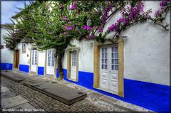Portogallo # 16 (celestino2011) Tags: blu porte strada obidos fiori