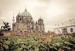 DSC_0165-3 (thiagoahlers) Tags: berlinerdom berlin germany lustgarten