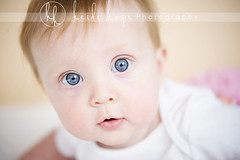 strawberry (Heidi Hope) Tags: ri pink portrait baby macro girl closeup ma blueeyes peach naturallight 6months portraitstudio portraitphotographer babyportrait babyphotographer newbornphotographer massachusettsphotographer rhodeislandphotographer heidihopephotography newbornportraitphotographer heidihope httpwwwheidihopecom httpwwwheidihopeblogspotcom wwwheidihopecom