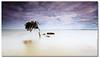 -----q---------- ([ Kane ]) Tags: longexposure sky tree clouds rocks dusk australia brisbane qld queensland kane gledhill 50d kanegledhill decptionbay wwwhumanhabitscomau kanegledhillphotography