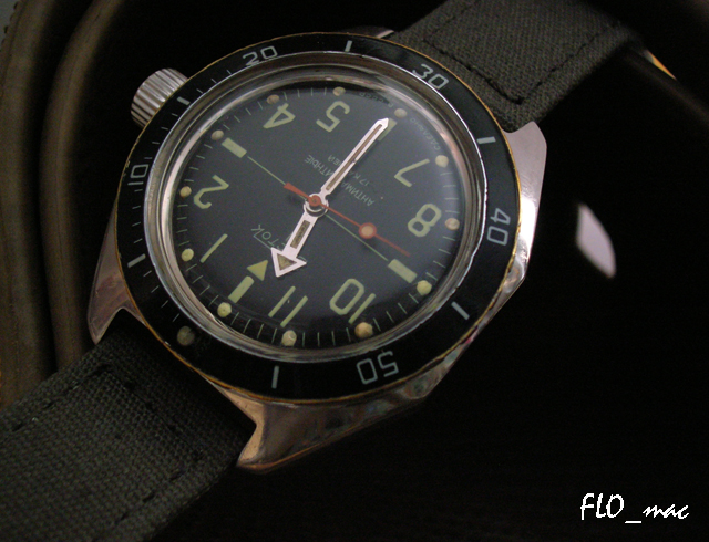 Feu de vos Vostok Amphibia 4189452087_8e072fa89f_o