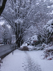 Snowstorm November06