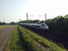 SNCF, TGV (Chris GBNL) Tags: train tgv sncf tgvsudest