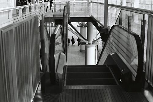 niigata monochrome film 10