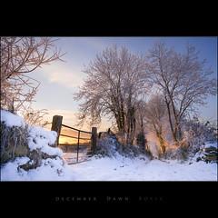 December Dawn Boyle (Tony Murphy) Tags: ireland winter snow december 2009 boyle roscommon