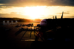 landing at narita airport. (dawn till dusk.) Tags: winter japan sigma 2009 narita naritaairport 成田空港 成田 dp2 december2009 sigmadp2