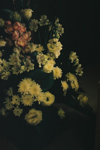 Flowers(Jan 2010)