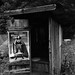 """Photographer, publicity photo, poster, Linda Carter, """"Wonder Woman,"""" outhouse, near Marshall, NC"""