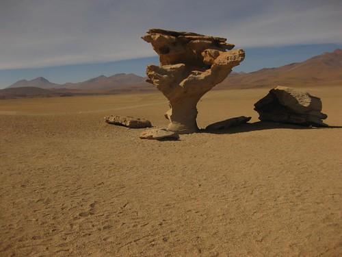 El Arbol de Piedra