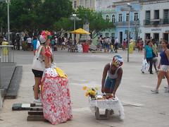 BAHIA 2010 032